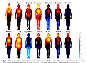 Body-Energy-Zones